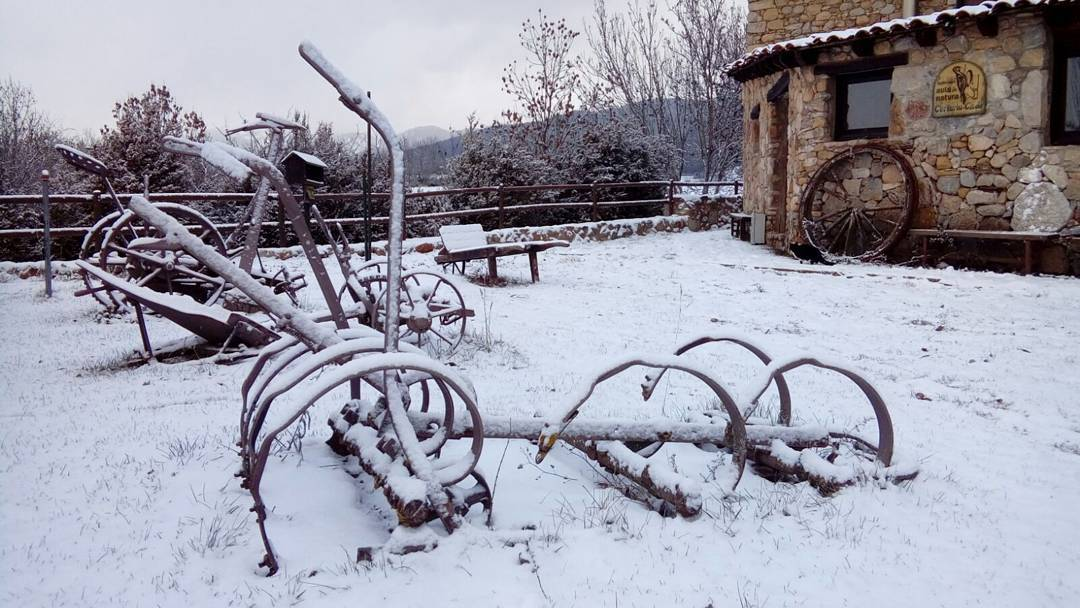 La neu ja ha arribat a calcalo coloniescadi cerdanya bellverdecerdanyahellip